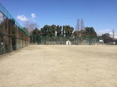 港陽公園野球場