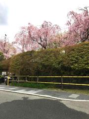 京都吉兆 嵐山本店