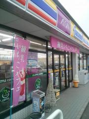 ミニストップ小村町店