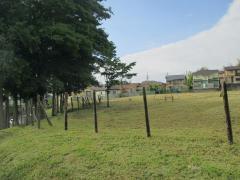 粟の須緑地