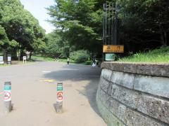 東京都立代々木公園