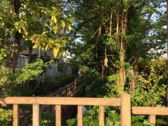 六辻水辺公園