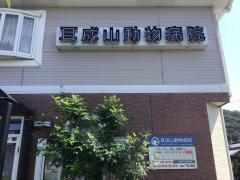 耳成山動物病院