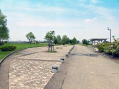 柳瀬川つつみ公園