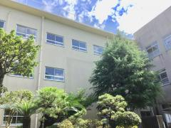 西城山小学校