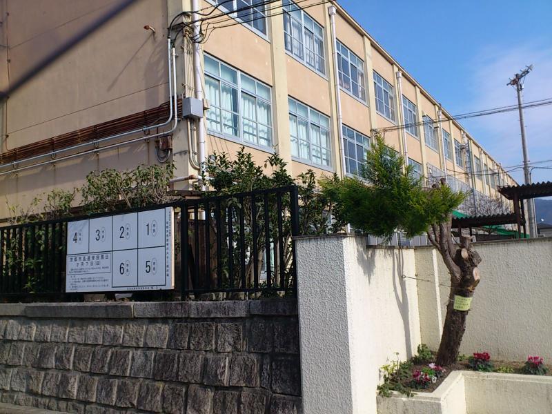 葵小学校(京都市左京区)の投稿...
