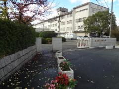 奈良県立医科大学大学院