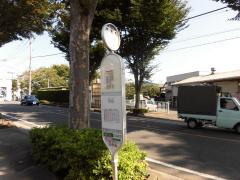 「新東橋」バス停留所