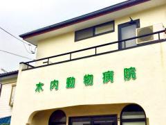 木内動物病院