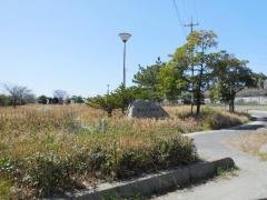 西山ふ頭緑地