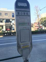 「要小学校」バス停留所
