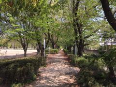 太田市藪塚本町中央運動公園
