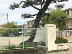 矢作北小学校