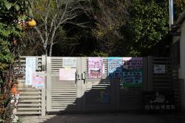白鳥南保育園