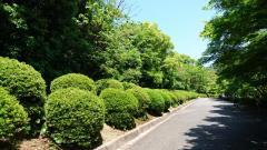 毛利氏庭園
