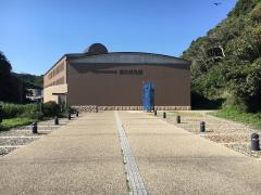 千葉県立中央博物館分館海の博物館
