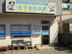 金子動物病院