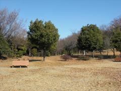 藤が丘デザイン公園