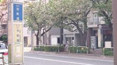 「桜新道」バス停留所