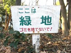 二俣川ニュータウン緑地