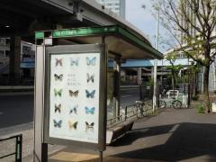 「六本木一丁目駅前」バス停留所