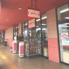 ザ・ダイソー西友楽市富士青島店