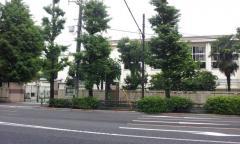 千駄谷小学校