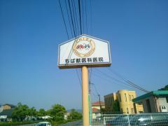 ちば獣医科医院