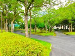桜ケ丘中央公園