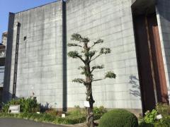 鹿島市民会館