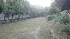 長洲川緑地