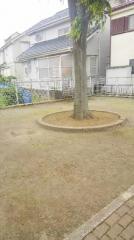 栗ケ沢1号緑地