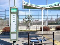 「住吉公園」バス停留所