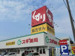 スギ薬局 刈谷松栄店