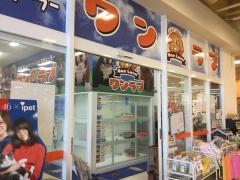 ペットショップワンラブ スーパーストアバロー戸田店