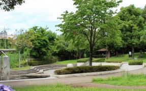 八条親水公園