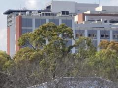 久留米大学病院ヘリポート