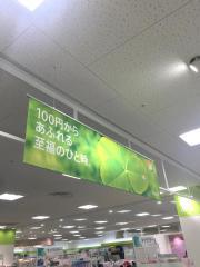 Seriaたつの赤とんぼ広場店