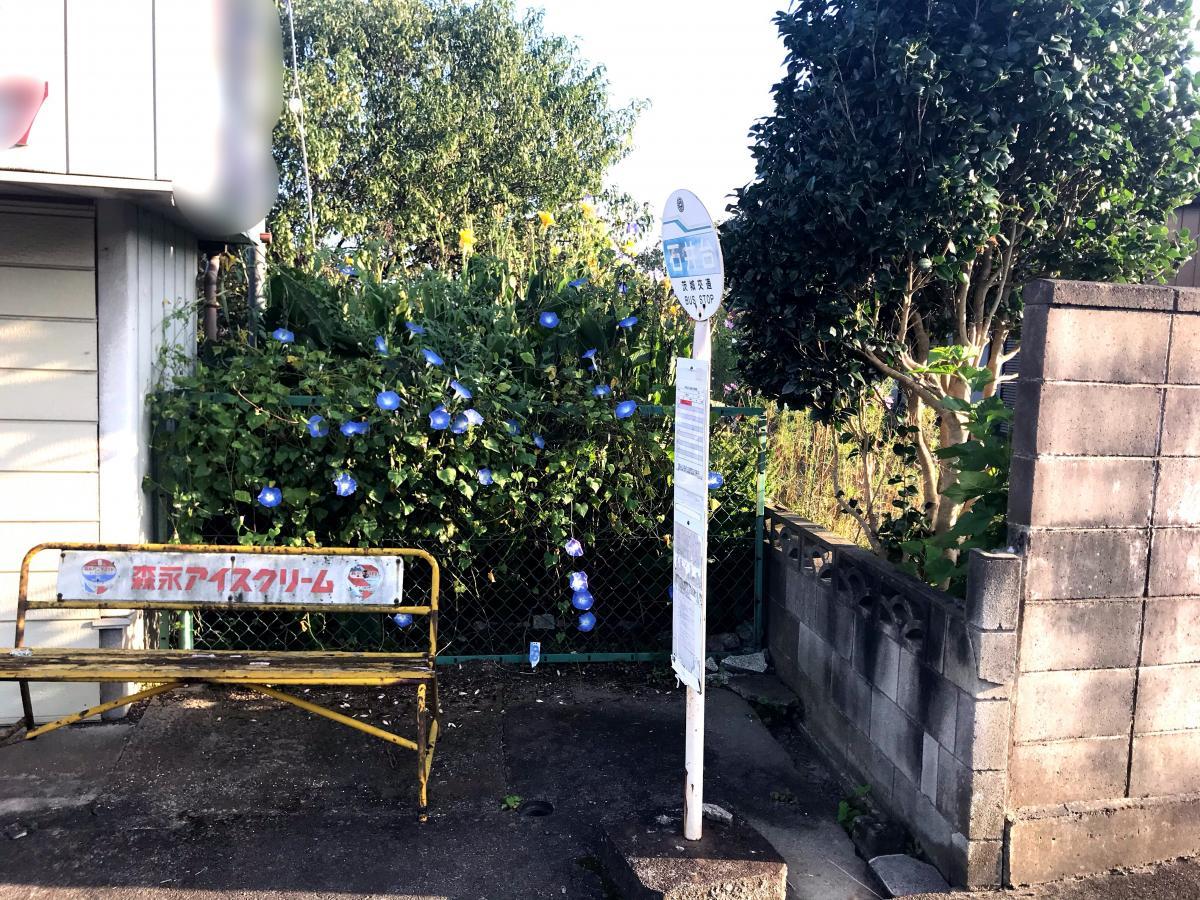 石井台バス停留所