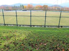 山形県総合運動公園野球場