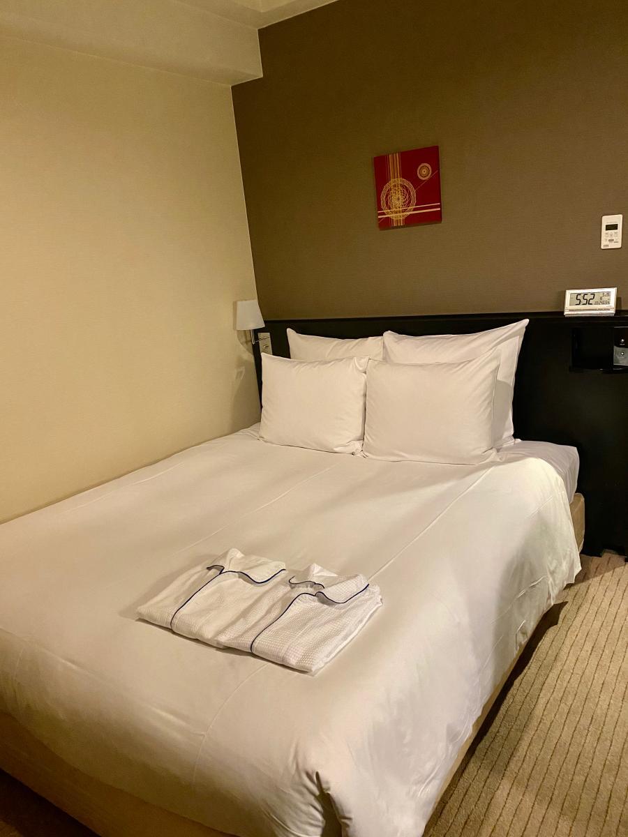 プラザ ホテル クラウン 金沢 ana