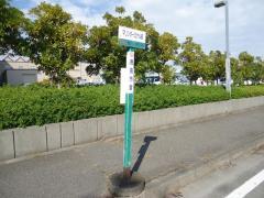 「マリンターミナル」バス停留所