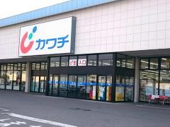 カワチ薬品 藤岡店