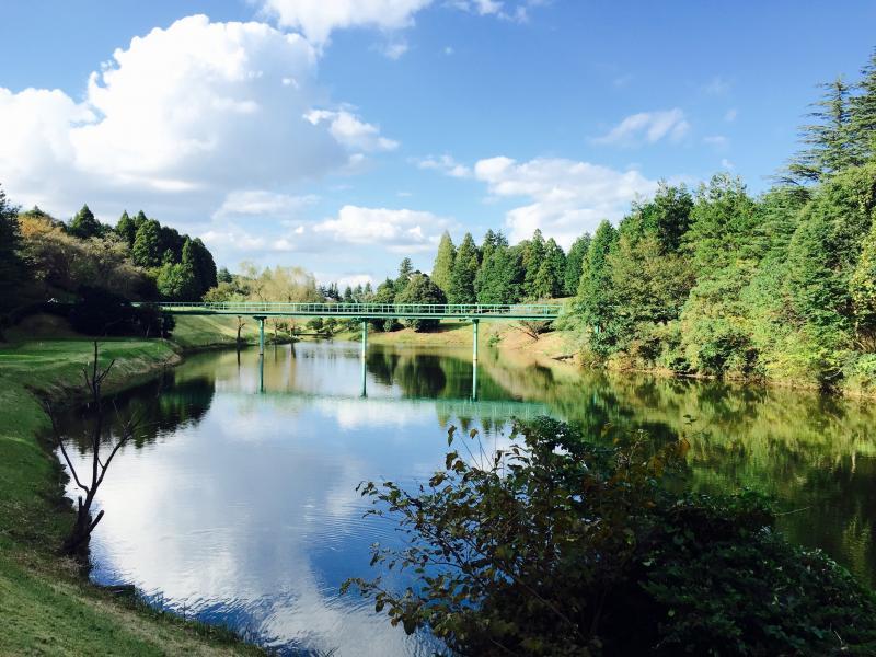 コース内の池