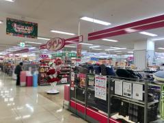 ザ・ダイソー イオン新潟西店
