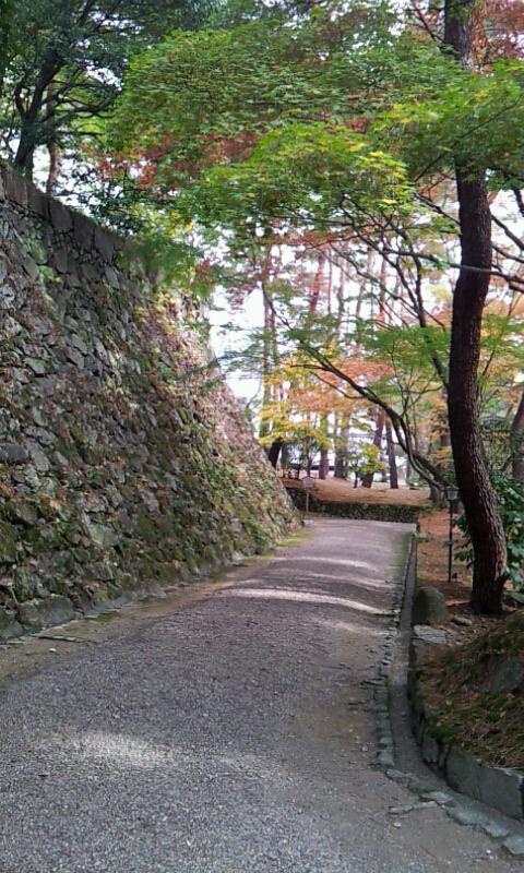亀山城址の敷地内です