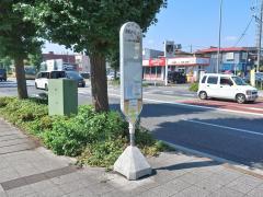 「清新小学校前」バス停留所