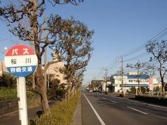 「桜川」バス停留所