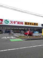 ドラッグスギ 植竹店