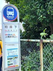 「柏座下」バス停留所